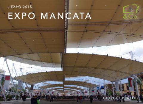 """Viaggi studio all'EXPO 2015 e le architetture della Milano """"del futuro"""" – 2015"""